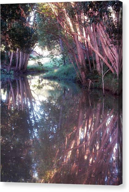 Creek Magic Canvas Print