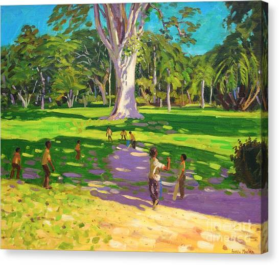 Crickets Canvas Print - Cricket Match St George Granada by Andrew Macara