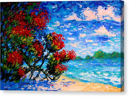 Crimson Bloom Red Flower Tree At The Beach Blue Sky Landscape Canvas Print