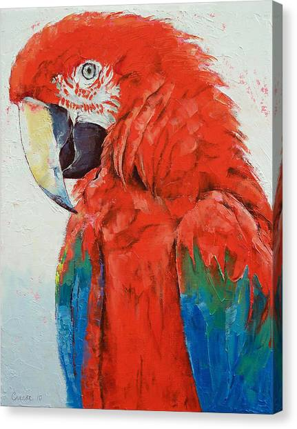 Macaws Canvas Print - Crimson Macaw by Michael Creese