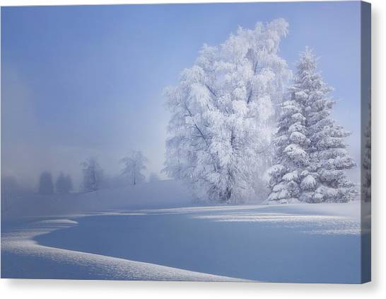 Hoarfrost Canvas Print - Crispy Morning by V?roniques