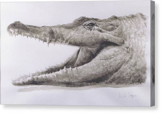 Jaws Canvas Print - Crocodile by Lincoln Seligman