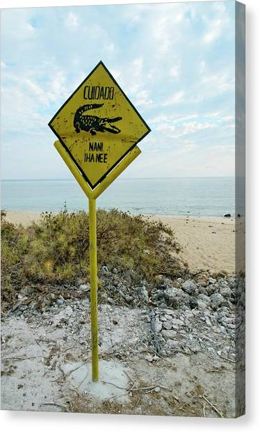 Crocodiles Canvas Print - Crocodile Warning Sign by Louise Murray/science Photo Library