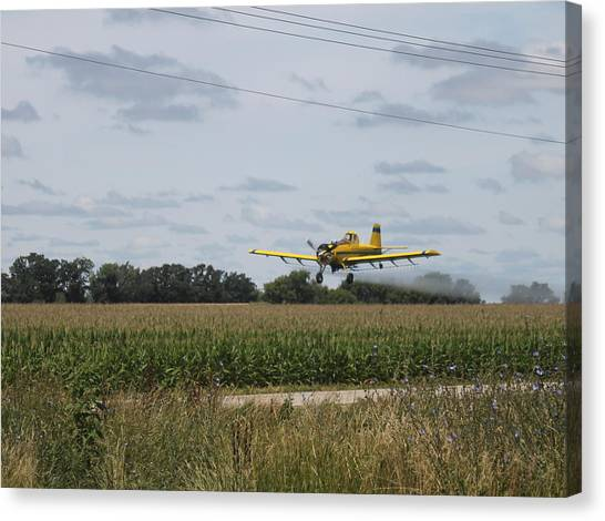Crop Dusting 2 Canvas Print by Victoria Sheldon