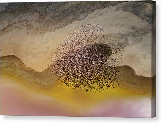 Heart Shape Canvas Print - Crossing Natron Lake by Phillip Chang