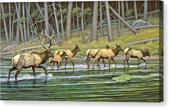 Yellowstone Canvas Print - Crossing The Gibbon by Paul Krapf