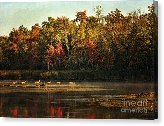Crossing The Lake Canvas Print