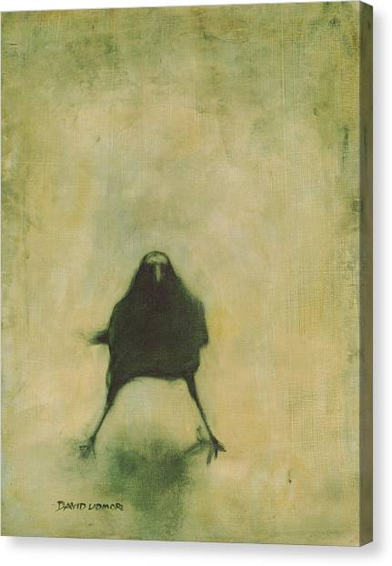 Crow Canvas Print - Crow 6 by David Ladmore