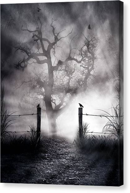 Beam Canvas Print - Crow Hallow by Peter Chilelli