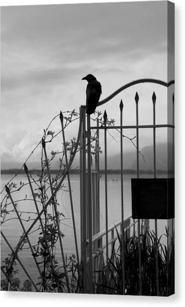 Crow On Gothic Gate Canvas Print