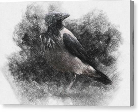 Raven Canvas Print - Crow by Zapista Zapista