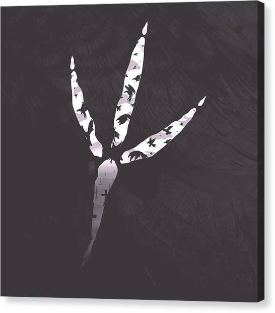 Feet Canvas Print - Crow's Foot by Daniel Hapi