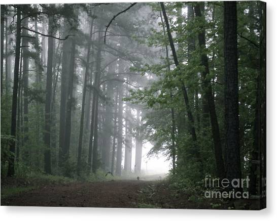 Crows In The Woods Canvas Print