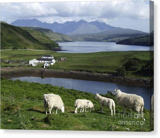 Cuillin Mountains - Isle Of Skye Canvas Print