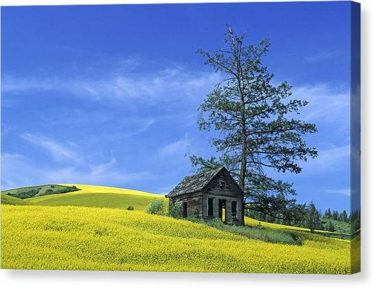Culdasac Homestead Canvas Print