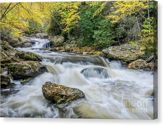 Cullasaja Falls Canvas Print - Cullasaja Autumn by Anthony Heflin