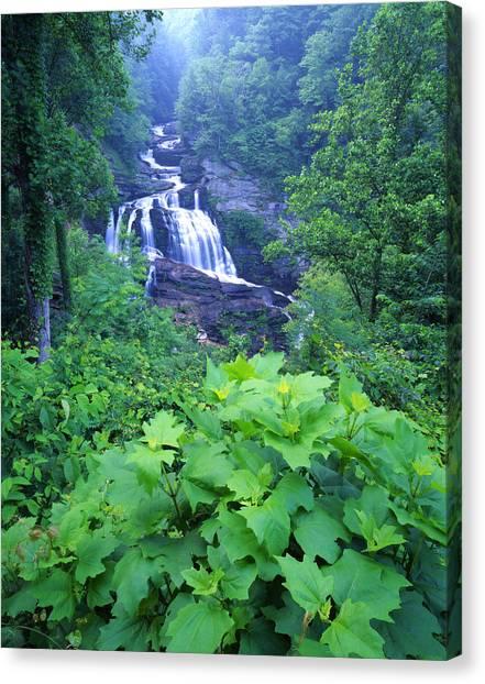Cullasaja Falls Canvas Print - Cullasaja Falls by Ray Mathis