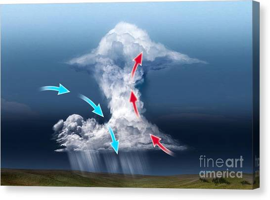Thunderclouds Canvas Print - Cumulus Thundercloud, Diagram by Claus Lunau