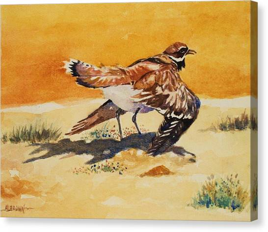 Curious Killdeer Canvas Print