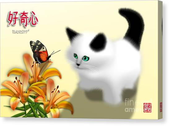 Curious Kitty And Butterfly Canvas Print
