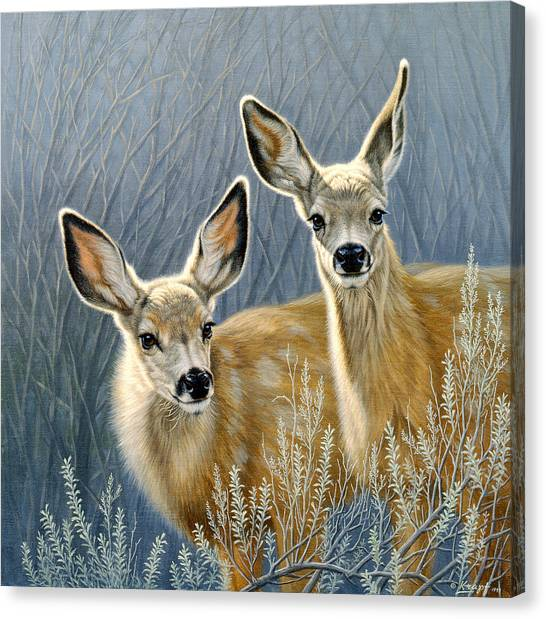 Deer Canvas Print - Curious Pair by Paul Krapf