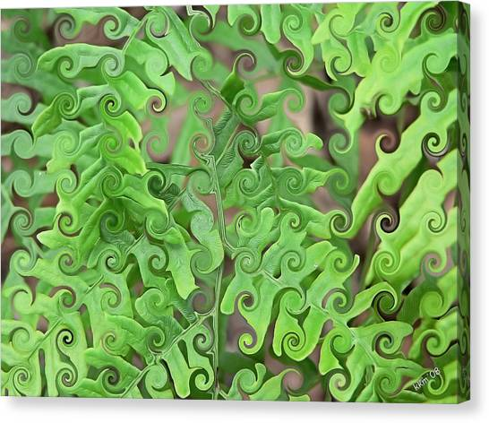 Curly Fronds Canvas Print