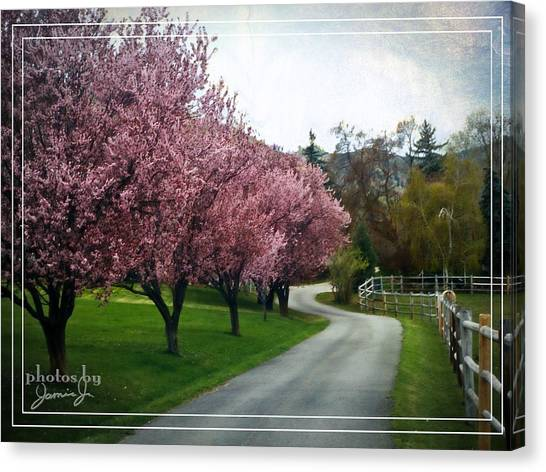 Curve In The Road Canvas Print