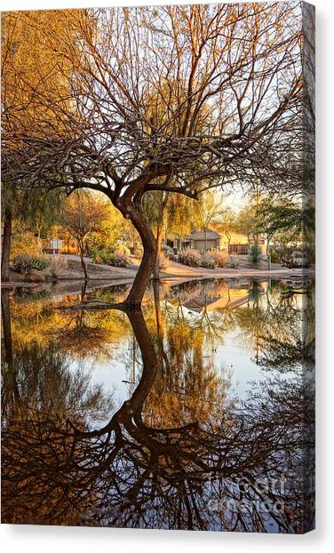 Curved Reflection Canvas Print