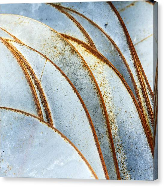 Curved Rust Canvas Print