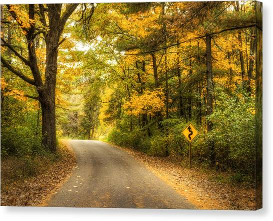 Autumn Leaves Canvas Print - Curves Ahead by Scott Norris