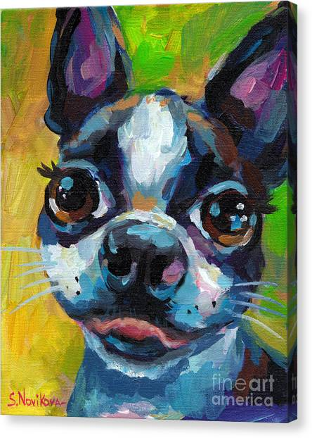Boston Terrier Canvas Print - Cute Boston Terrier Puppy by Svetlana Novikova