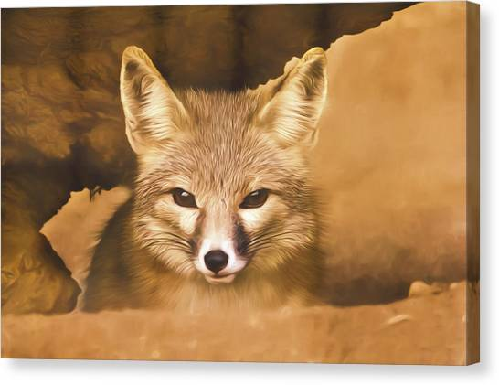 Cute Fox  Canvas Print