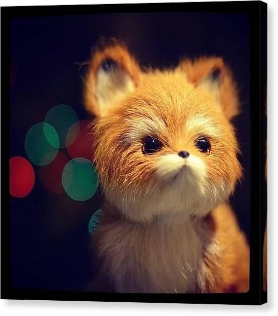 Foxes Canvas Print - #cute #furry #fox #bokeh #lighting #dof by Adrian M Lin