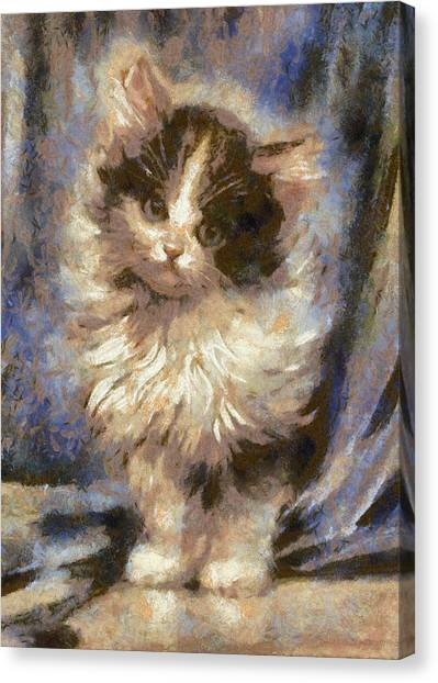 Cute Kitty Canvas Print