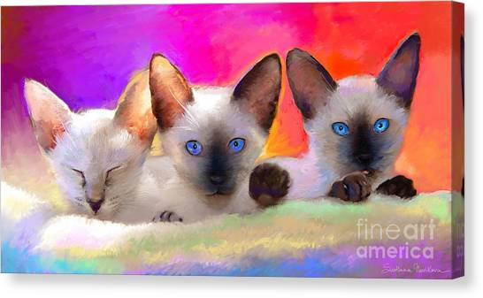 Siamese Canvas Print - Cute Siamese Kittens Cats  by Svetlana Novikova