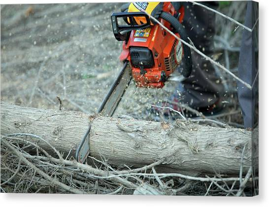 Chainsaw Canvas Print - Cutting Firewood by Photostock-israel