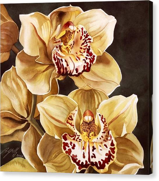Cymbidium Orchids Canvas Print by Alfred Ng