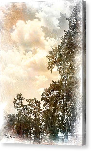 Swamp - Louisiana - Cypress Heaven Canvas Print by Barry Jones