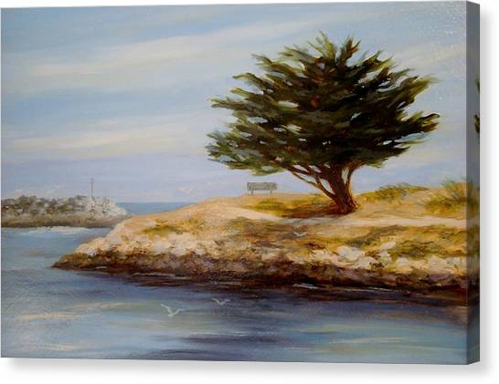 Cypress Tree At Marina Park #2 Canvas Print by Tina Obrien