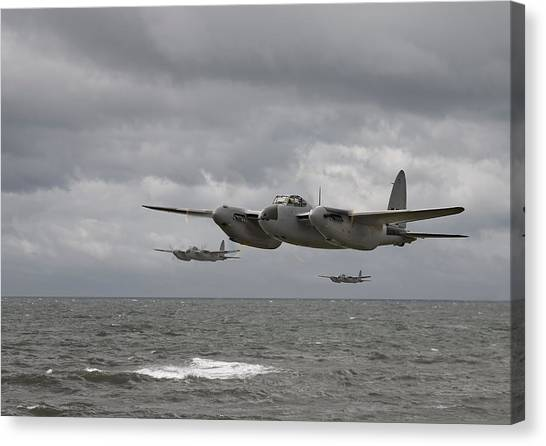 D H Mosquito Canvas Print