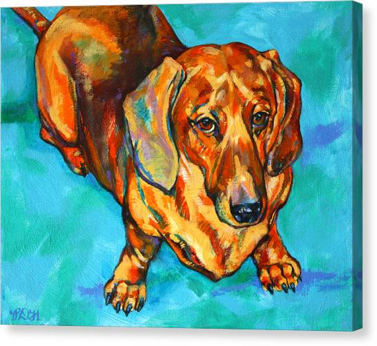 Hot Dogs Canvas Print - Dachshund by Derrick Higgins