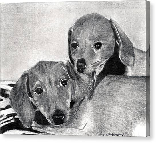 Dachshund Puppies Dog Portrait  Canvas Print by Olde Time  Mercantile