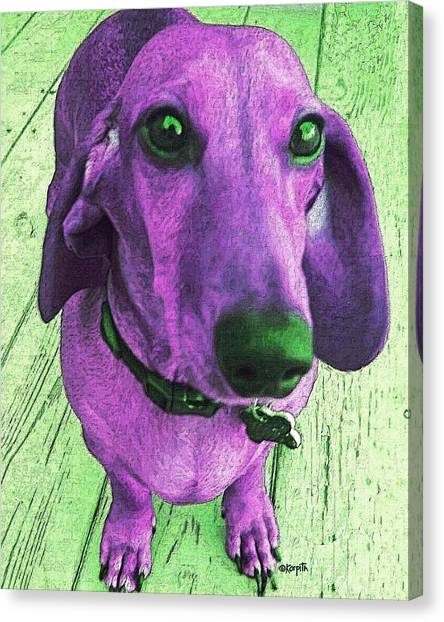 Dachshund - Purple People Greeter Canvas Print