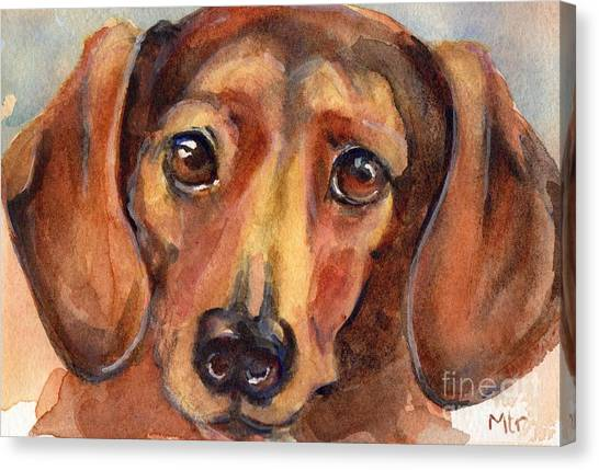 Watercolor Pet Portraits Canvas Print - Dachshund Watercolor by Maria's Watercolor