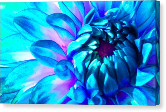 Dahlia In Pastel Canvas Print by James Hammen