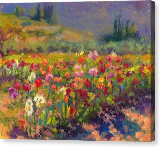 Dahlia Row Canvas Print