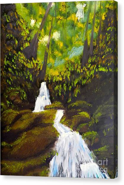 Daintree Natural Park Canvas Print