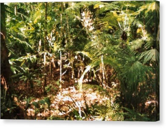 Daintree Rainforest Canvas Print - Daintree Rainforest Or Daintree Jungle Painting by Asbjorn Lonvig