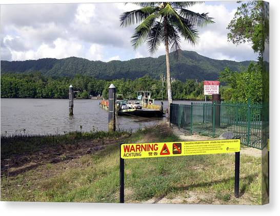 Daintree Rainforest Canvas Print - Daintree River Crossing by Martin Rietze