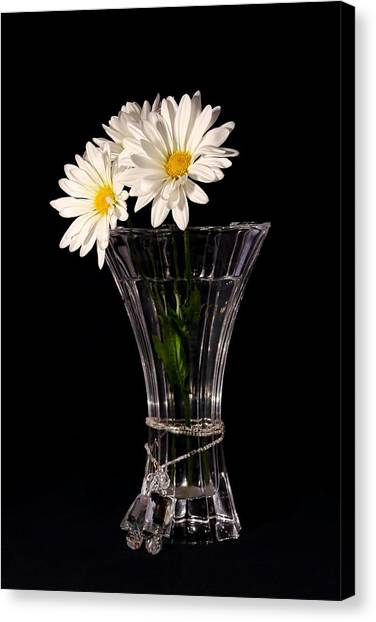 Daisies In Vase Canvas Print